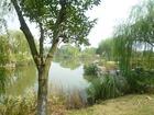 20111007浜江公園2池