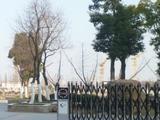 0123程宅周辺の開発公園3