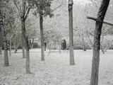 20121105初雪写真撮影
