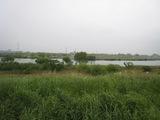 20100523-7松戸宿対岸