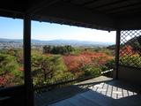 2008年秋京都 159
