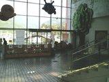 アンパンマンホール