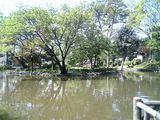 20090422有栖川公園4