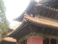 20110618孔子廟9