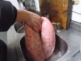 0108豚肺2