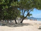 20009キューバ ホテルアミンゴ海岸