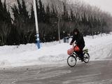 20110105自転車1
