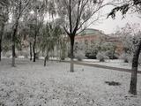20121105初雪