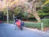 2008年秋京都 093