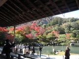 2008年秋京都 120