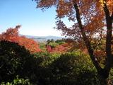 2008年秋京都 157