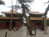 20110618孔子廟4