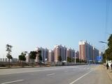 0123程宅周辺の開発1