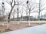 20120319右手、遊泳館と総合文体活動中心