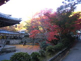 2008年秋京都 087