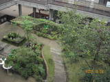 屋上から庭