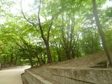 20110504後宮3