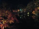 2008年秋京都 100