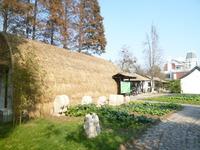 20111217南通紡績博物館6