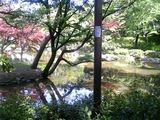 20090422有栖川公園2