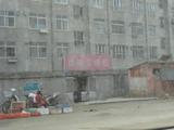 20101113中華まん2
