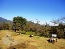20151128公園
