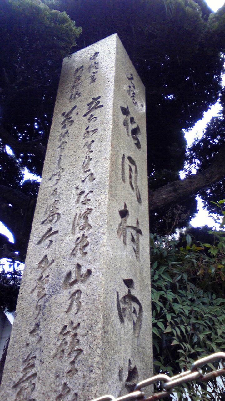 201012131155000