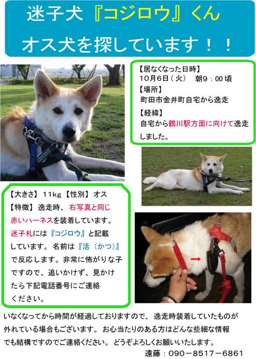 活くん 2009Nov ポスター A4