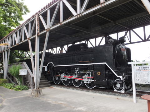 【浜松】D51-86 はままつフラワーパーク