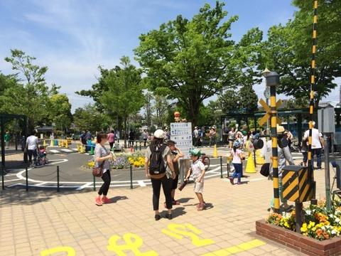 【足立】C50 75とミニフレッシュひたちetc 北鹿浜交通公園