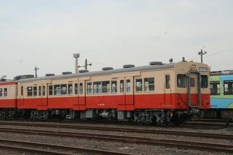 IMG_0582