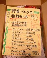 野菜ソムリエ教材セット