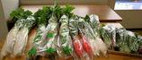 伊藤農園の野菜たち