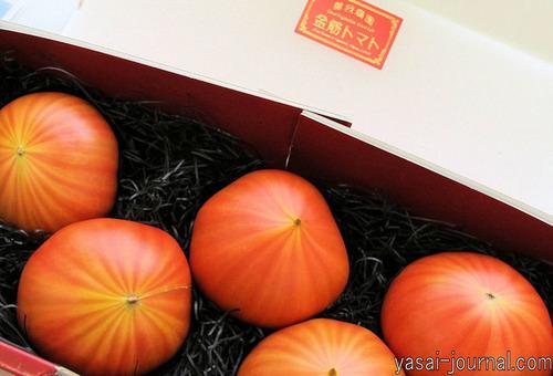 金筋トマトmini