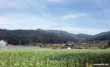 なつはな畑からの眺め2011.9
