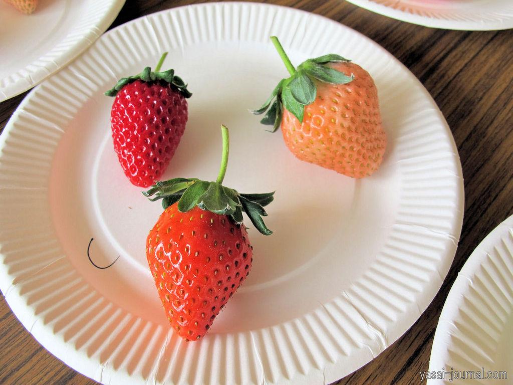 イチゴの画像 p1_29
