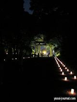 明治神宮ライトアップ