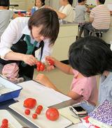アイコの収穫体験@NHK学園「まるごとトマトを大解剖」