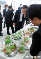 工場野菜の試食