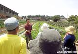 久松農園見学会