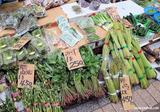 山菜まつり@新潟市