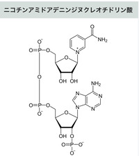 D2C8A4C4-2BA4-49F3-9D23-3017AFAB6921