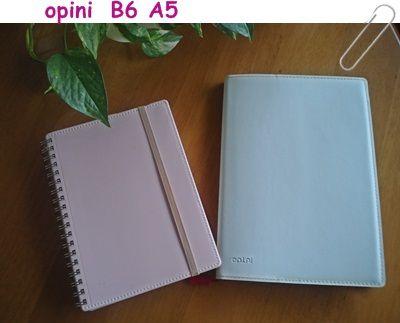オピニ04