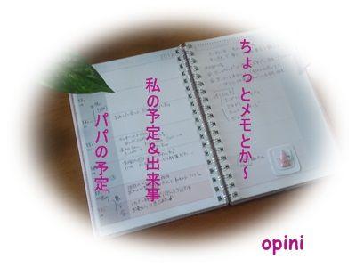 オピニ02
