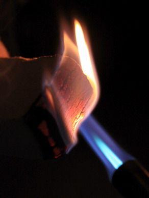 smokewood20110316-002