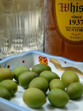 olive20091118-005.JPG