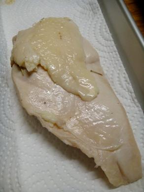 torihamu20080902-004.JPG