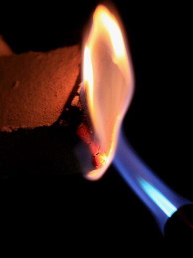 smokewood20110316-777