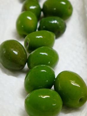 olive20081106-002.JPG