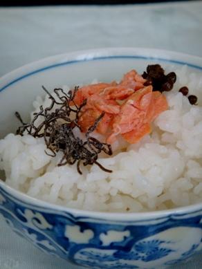sakecha20090822-001.JPG